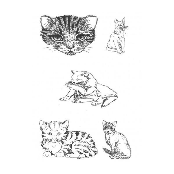 Designer Silk Screen - Cat-2 Pattern
