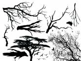 Branches & Birds Decals Super Sheet